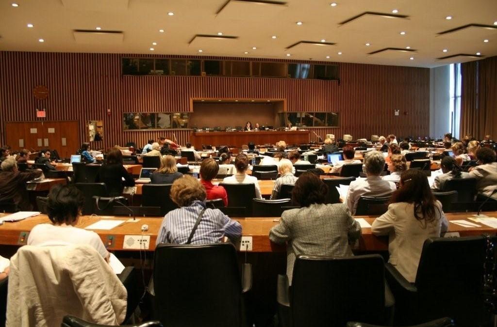 Informacije BIH UN CEDAW Komitetu  (CEDAW/C/BIH/CO/4-5)