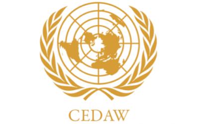 Zaključna zapažanja na Šesti periodični CEDAW izvještaj BiH