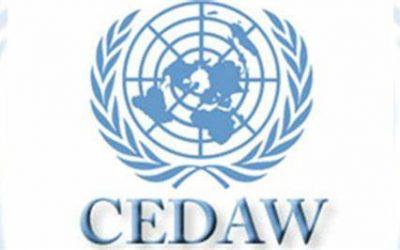 Informacija o zaključnim zapažanjima u vezi sa Šestim periodičnim izvještajem Bosne i Hercegovine UN Komitetu o eliminaciji svih oblika diskriminacije žena (CEDAW) sa  Akcionim planom za provedbu u Federaciji Bosne i Hercegovine